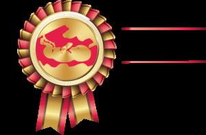STI_Logo_Ambassadeurs